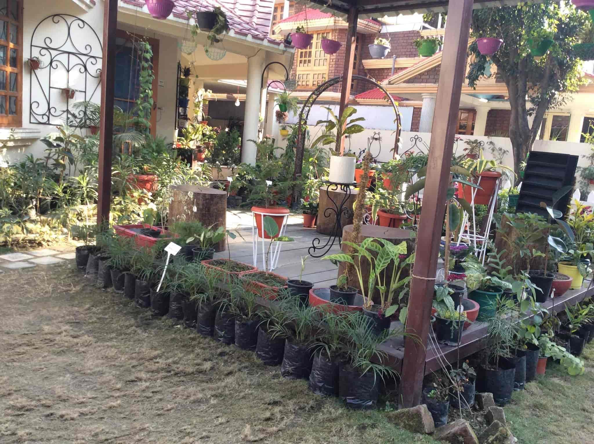 Nature The Garden Store Photos, Dehradun City, Dehradun   Plant Nurseries  ...