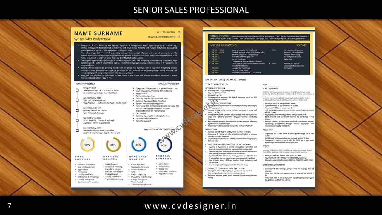 Cv Designer India S No 1 Resume Writer Resume Preparation In