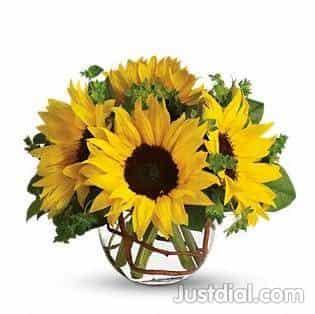 Taylor Wholesale Florist 1601 W 21st St, Houston, TX - 77008 1of5
